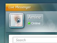 Windows Live Messenger UI